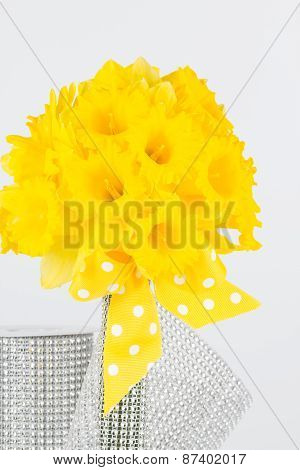 Yellow Daffodils And Stem Wrapper