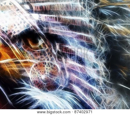 Native Abstract Color Feathers  Background With Wild Animals Eagle Eye , Fractal Effect
