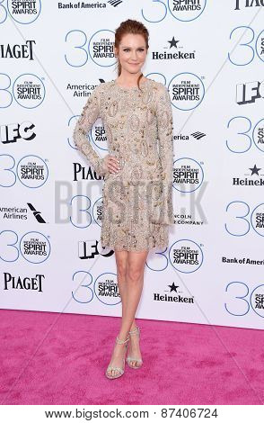 LOS ANGELES - FEB 21:  Darby Stanchfield arrives to the 2015 Film Independent Spirit Awards  on February 21, 2015 in Santa Monica, CA
