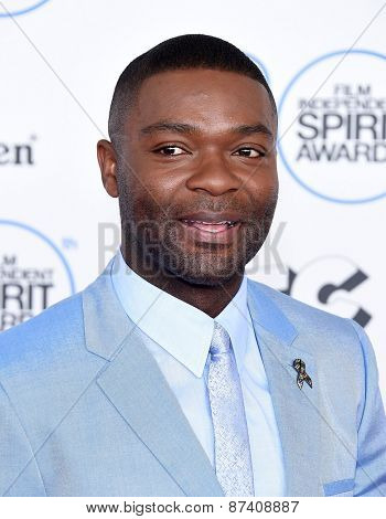 LOS ANGELES - FEB 21:  David Oleyowo arrives to the 2015 Film Independent Spirit Awards  on February 21, 2015 in Santa Monica, CA