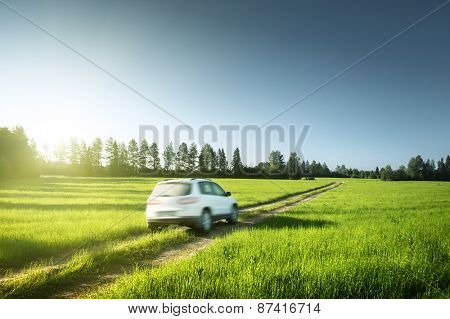 spring field and blurred car on ground road