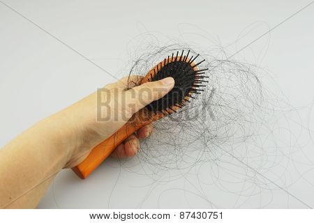 Women And Hair Loss Problems