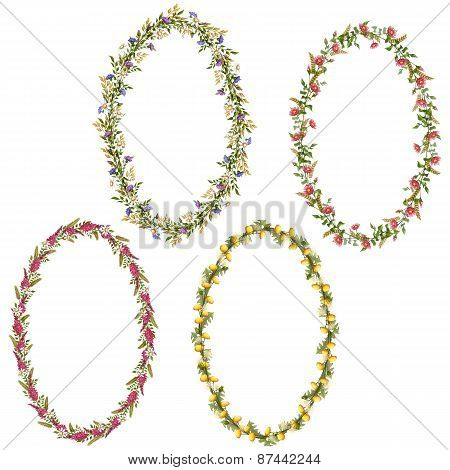 Vector floral oval frames for your design
