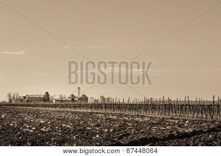 Agricultural Scene Vintage