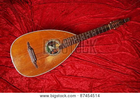lute instrument