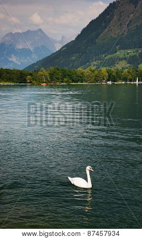 Zeller Lake, Zell am See, Austria, Europe
