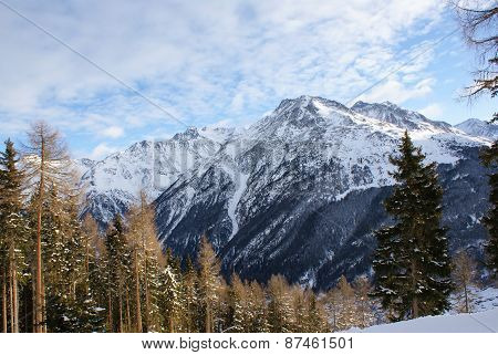 The mountain in the snow, sky with clouds, snow-covered spruce