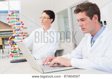 Scientist working attentively with laptop and another with dna model in laboratory