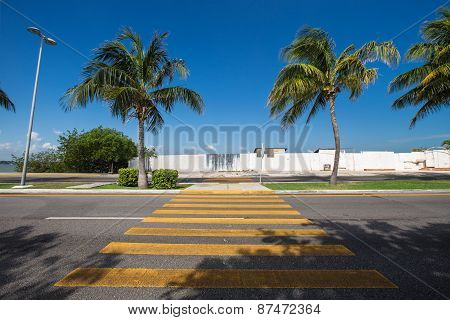 Pedestrian Crossing On Tropical  Road