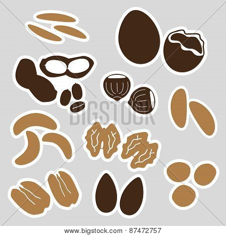 Various Nuts Types Brown Stickers Set Eps10