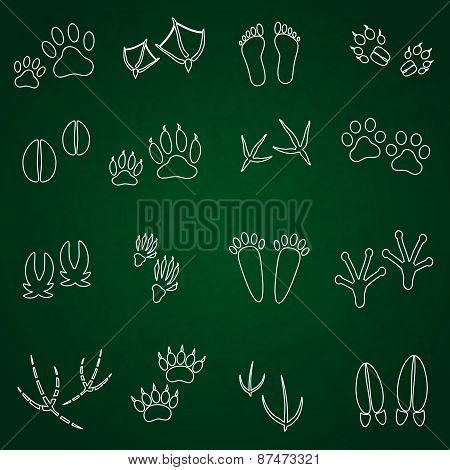Basic Animal Footprints Outline Icons Set Eps10