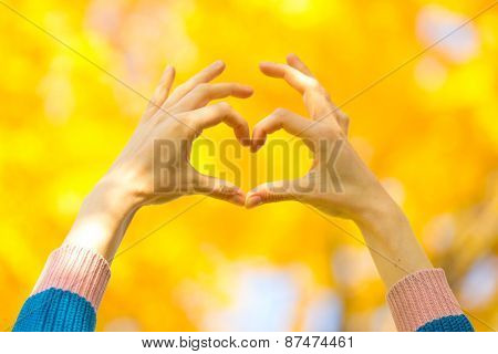 Heart Symbol From Fingers Of Hands Against Bright Yellow Autumn Foliage In A Side