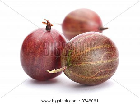 Brown Gooseberry Fruit