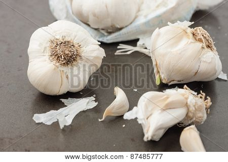 garlic on dark background