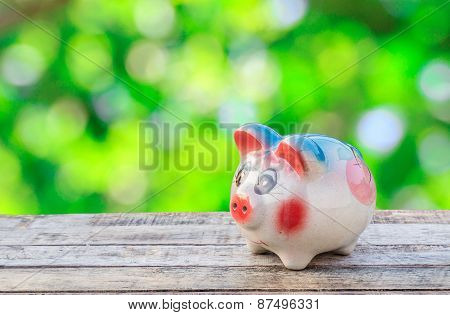 Save Pig On Wooden Background