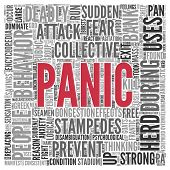 image of panic  - Close up Red PANIC Text at the Center of Word Tag Cloud on White Background - JPG