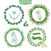 pic of laurel  - Set of watercolor laurels wreaths - JPG