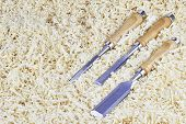 foto of chisel  - Three chisels of various widths lying in wooden shavings - JPG