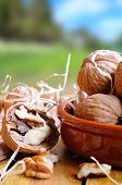 picture of shells  - Group of healthy walnuts in shell and shelled exposed on a wooden table in the fieldvertical composition - JPG