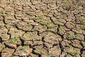 stock photo of drought  - Close up cracked soil during drought - JPG
