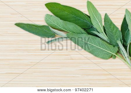Fresh Sage Put On Wooden Board. - Spices Ingredient With Macro Shot