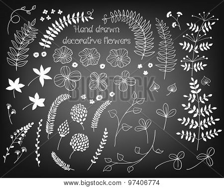 Doodle Plants And Flowers Collection