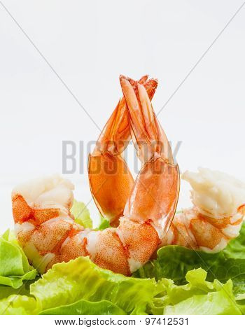 Mixed Green Salad With Shrimps