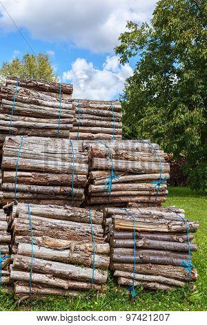 Big Pile Of Wood Logs