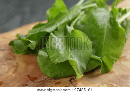 fresh sorrel leaves on cutting board on oak wood table