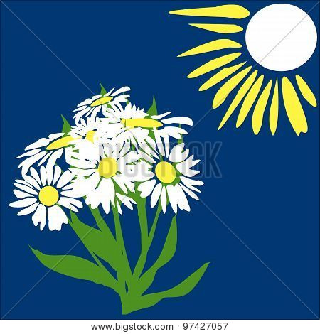 Sun And Daisies
