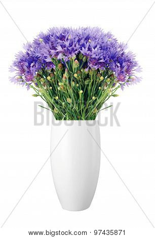 Beautiful Cornflowers In Vase Isolated On White