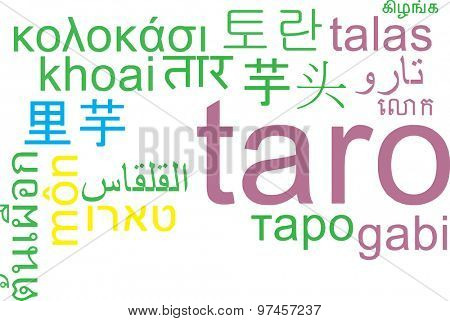 Background concept wordcloud multilanguage international many language illustration of taro
