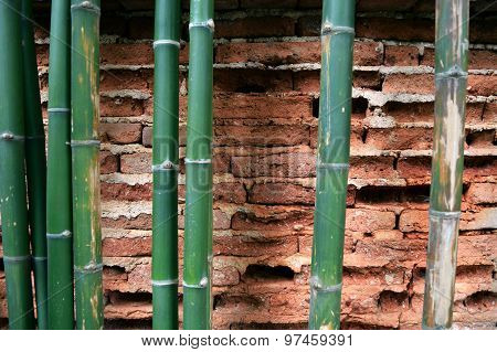 Old wall brick cracks and bamboo stem art retro background