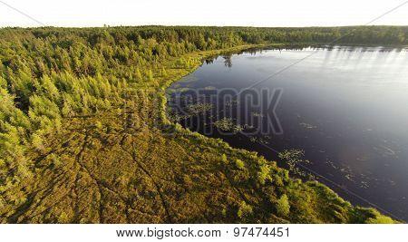Bog Lake Aerial
