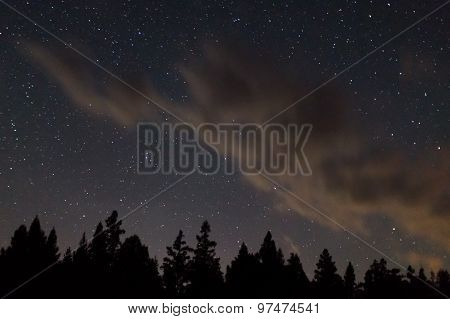 Cloud In The Stars