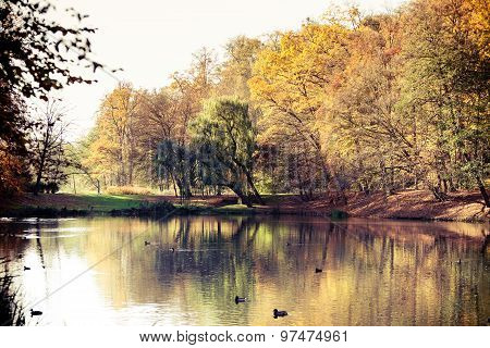 Autumn Park With Pond. Fall Landscape.