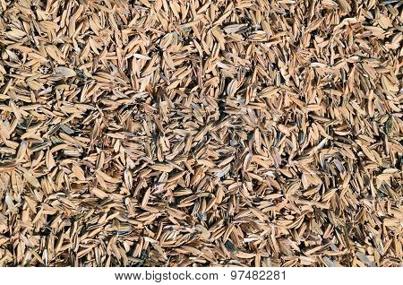 Rice Peel. Background.