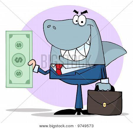 Business Shark Holding Cash