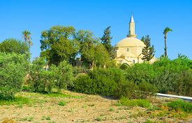 foto of larnaca  - The medieval mosque among the scenic green garden on the bank of Larnaca Salt lake Cyprus - JPG