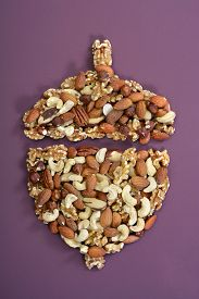 picture of brazil nut  - Nuts concept including brazil nuts cashews walnuts pecans almonds and hazelnuts in shape of acorn outline on modern maroon table background - JPG