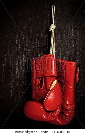 boxing-glove hanging