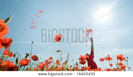 Girl stands in poppy field