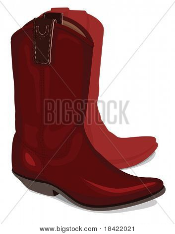 Illustration of cowboy boots, isolated on white background