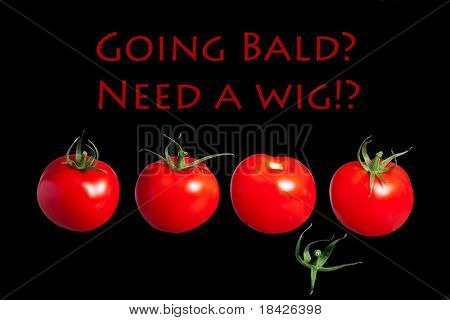going bald need wig hair loss losing hair to baldness balding vital hair, row of red tomatoes one lost its hair thinning hair