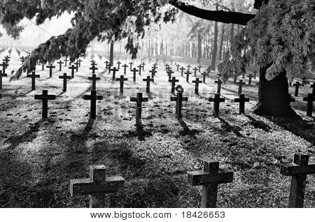 graveyard with rows of crosses and trees during first winter frost monochrome film grain