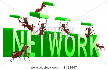 network building internet or social web construction 3D word created by ants