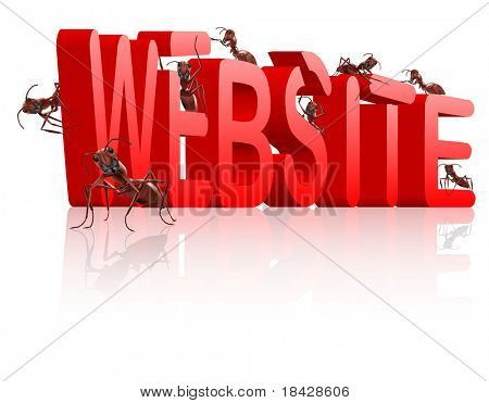 www web site under construction website development internet page building ants creating red 3D word