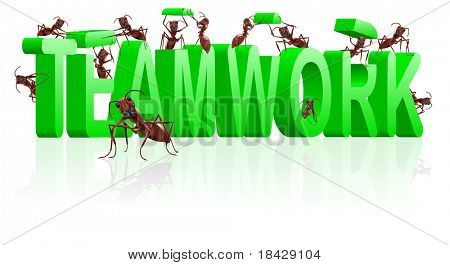 teamwork ants cooperation and collaboration in building word