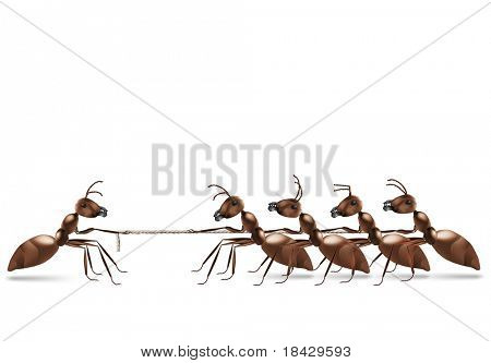 ant rope pulling business advantage or unbalanced fight concept unbalanced conflict out numbered