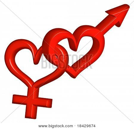 gender symbol heterosexual couple bound red heart love hearts happy valentines day love couple sweet valentine date hot romance gender symbol romance isolated on white engaged pair ready for marriage